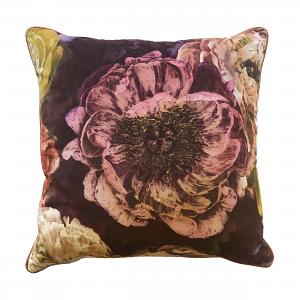 Cushion Bloom