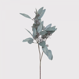 Sage Eucalyptus Spray with Seeds