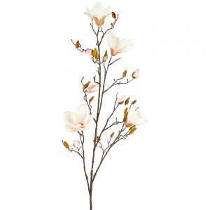 Magnolia Spray in Blush