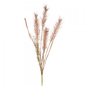 Wheat Grass Spray - Blush